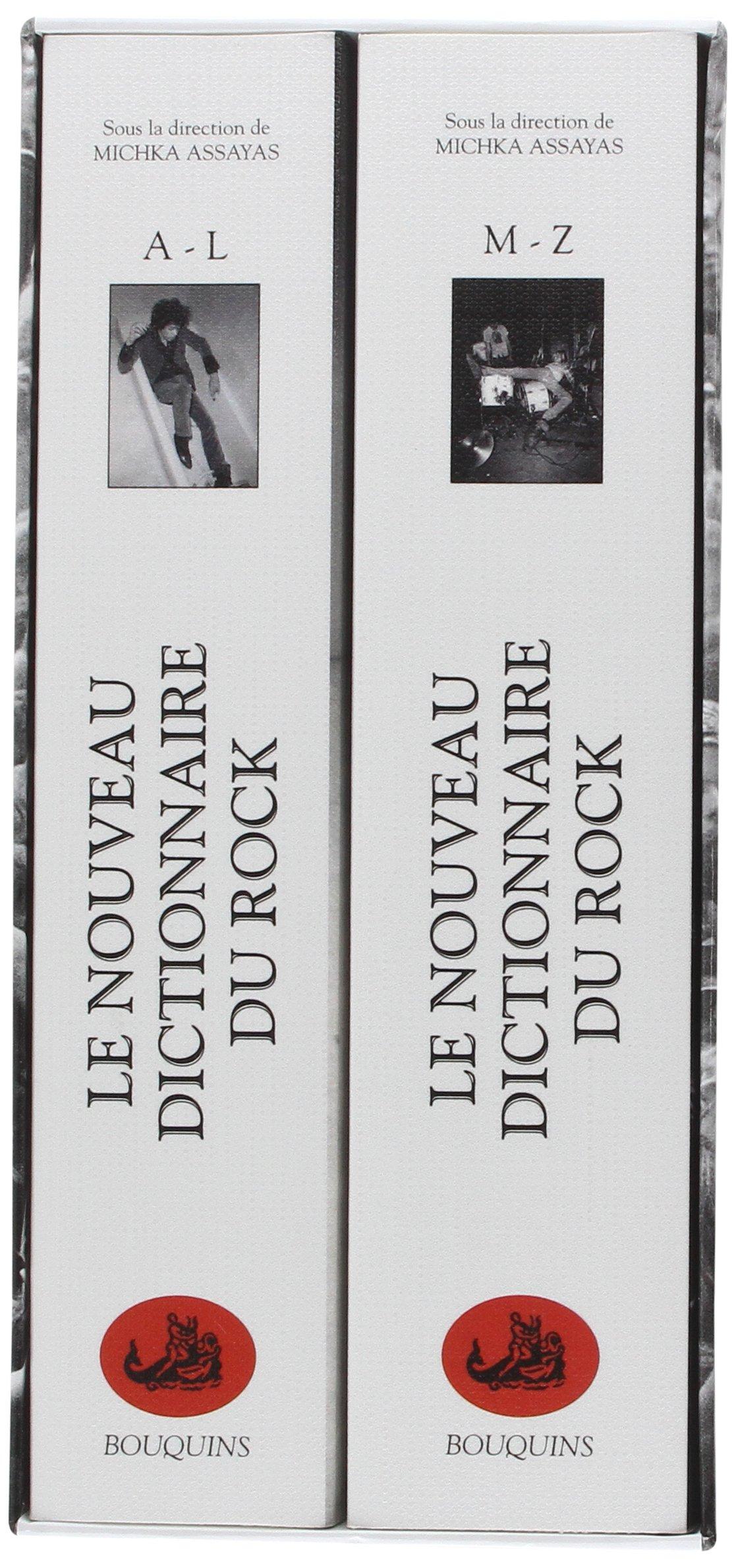 DICTIONNAIRE DU ROCK (1)