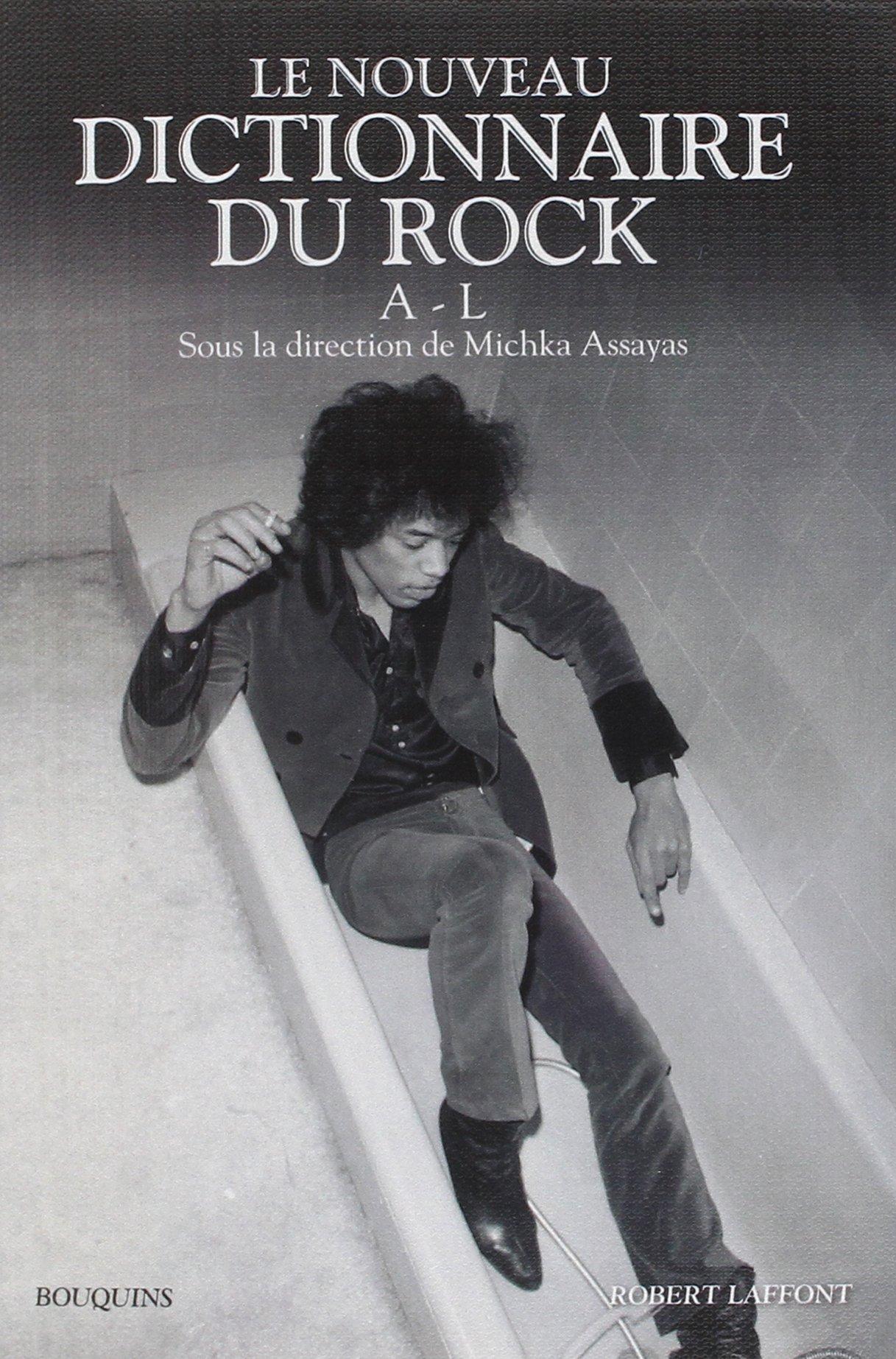 Le Dictionnaire Du Rock (coffret En 2 Volumes)