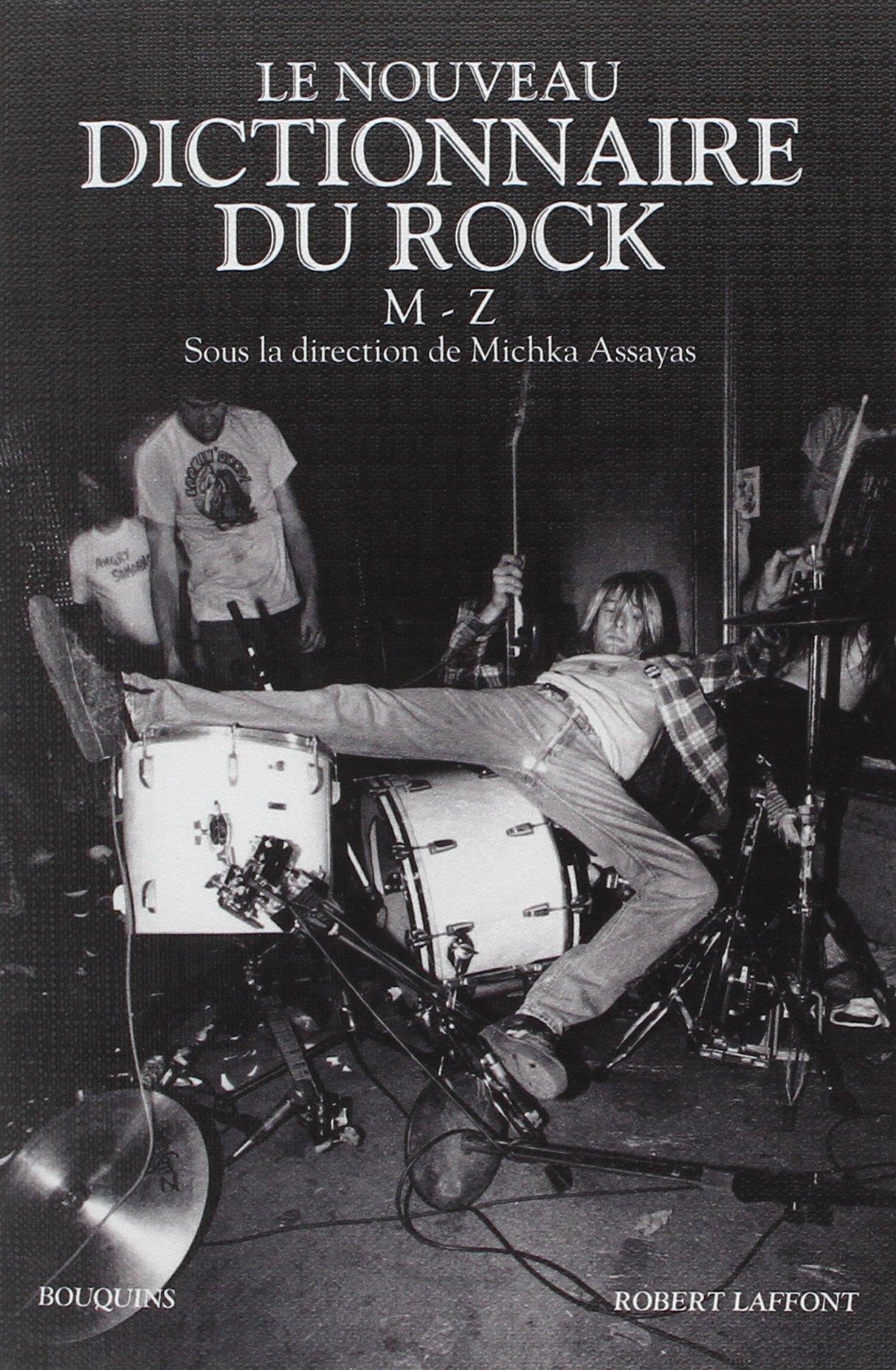 DICTIONNAIRE DU ROCK (3)