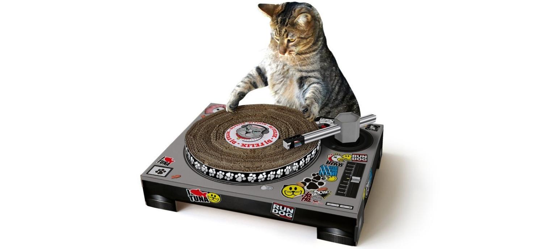 Une Platine à Gratter Pour Chats DJ !